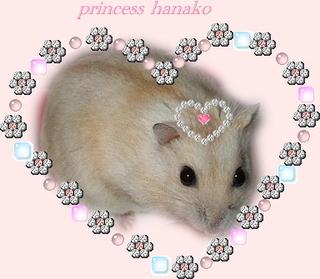 Princess_hanako
