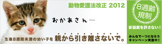 8syu_b_main_l3